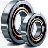 Rolamento de esferas e rolamento de esferas SKF Auto Bearings Series