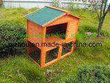 Maison de lapin (QZR8034)