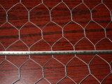 낮은 탄소 철사 최신 복각 직류 전기를 통한 6각형 철사 그물세공