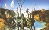 Salvador Dali Huile sur toile - 05