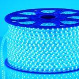 12V/24V SMD5050 LED 끈 크리스마스 불빛 ETL LED 지구