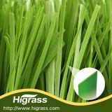 フットボール競技場のための60mmの耐久の反紫外線サッカーの総合的な草