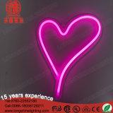 Het roze Teken van het Neon van de Lip 5V Batterij In werking gestelde voor de Decoratie van de Slaapkamer