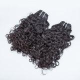 비꼬인 꼬부라진 인도 머리 Virgin 인도 자연적인 파 머리