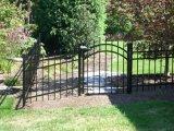 Jardin noir décoratif clôturant avec la grille