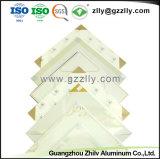 Matériau de construction facile à nettoyer les dalles de plafond polymériques en aluminium