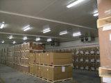 Conjunto modular de armazenamento de carne fresca Sala Fria, Pé-na Sala do Chiller