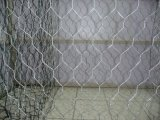 Engranzamento de fio sextavado galvanizado e PVC-Revestido da galinha do engranzamento de fio