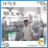 Ligne remplissante gazéifiée par bouteille en plastique élevée de boisson de précession fabriquée en Chine