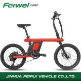 2017 Nuevo modelo de bicicleta eléctrica plegable (FR-Z1)