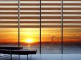 フランス窓の虹のロールブラインドの家のオフィスのシマウマのブラインド