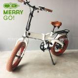500W 750Wによって隠される電池大きい力の脂肪質のタイヤの電気バイク