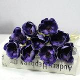 Touchez l'eau douce réel Anemone fleur Anémone artificielle pour la vente de fleurs