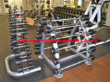 Cremalheira comercial do Dumbbell do vinil (49 pares) (HR-006)