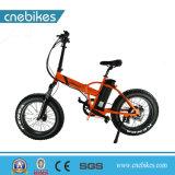 Bici elettrica della gomma grassa 20*4.0 di Cnebikes 2018 con Ce approvato