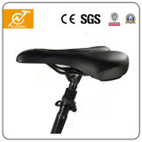 elektrisches Fahrrad 25km/H, das elektrisches Fahrrad /Ebike faltet