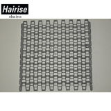 Hairiseのステンレス鋼Pinの大きい開いたレートプラスチックモジュラーベルト