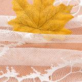 Merletto di buona qualità di disegno del tessuto di tessile
