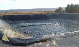 Kenya Cusotomer Geomembrana HDPE