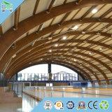 Materiale da costruzione del comitato acustico per il comitato di parete della scheda del soffitto