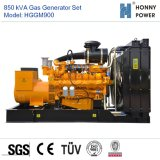 Googolエンジン50Hzを搭載する900kVAガスの発電機
