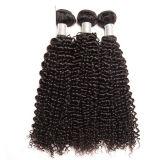 100% 사람의 모발 가발 비꼬인 곱슬머리 끈목