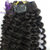 Virgin Brazilian Hair tie-clip in Hair Extension
