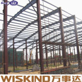 Новая конструкция больших Span пространства стали структуры строительного материала