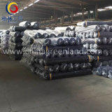 Tela hecha punto Odile del algodón para la ropa de la materia textil de la ropa (GLLML496)