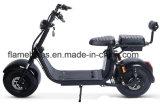 2つのセット電池が付いている1500W電気Harleyのスクーター