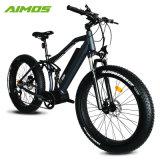 セリウムの公認750W安い脂肪質のタイヤの電気バイク