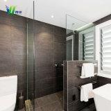 Templado esmerilado aseo con ducha y baño CRISTAL DE TABIQUE