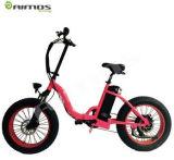 電気バイクを折るAimos 48V 750W
