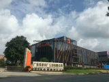 L'alliage d'aluminium 6063 de qualité de Dali a expulsé profil