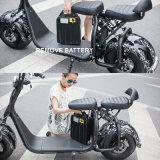 горы автошины Bike 18inch 1000W Harley самокат электрической электрический