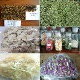 La congelación de productos farmacéuticos de vacío de pelo