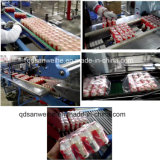 De Flessen van de multi-Rij van de breed-film krimpen Verpakkende Machine