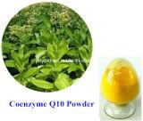 Coenzima solubile in acqua organico 100% antinvecchiamento Q10 di 98%