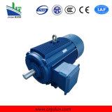 Ie2 Ie3 hohe Leistungsfähigkeit 3 Phasen-Induktion Wechselstrom-Elektromotor Ye3-280m-4-90kw