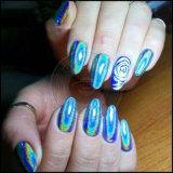 Косметический голографический порошок краски яркия блеска, голографический пигмент ногтя радуги