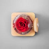 Regalo conservato naturale Handmade del fiore per la decorazione di natale