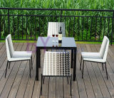 Ocio al aire libre del hotel del jardín que cena el vector de la rota del PE y los muebles de la silla