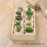 Rectángulo de madera para las plantas y las flores