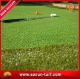 中国からの最も売れ行きの良く総合的な人工的な草の泥炭