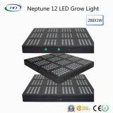 Heiß-Verkauf Neptun-Serien LED wachsen für Handelsbearbeitung hell