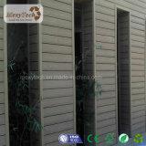 Panneau en bois vif de papier de mur extérieur de composé de la texture WPC