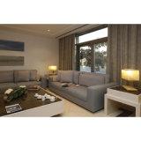 صنع وفقا لطلب الزّبون بسيطة مزدوجة غرفة نوم مجموعة فندق شقة أثاث لازم ([ست0010])