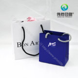 Kundenspezifisches Geschenk-Papier-Drucken-Beutel-Verpacken sortiert mit Griffen