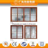 Moderner Entwurf des Aluminiumglasgitters auf Tür und Fenster