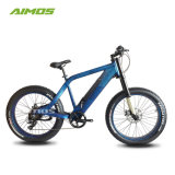 Vélo Electrique vélo électrique de frein Hydralic bon marché avec affichage LCD USB